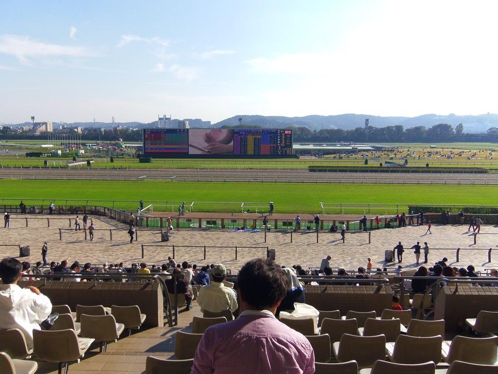 東京競馬場の大パノラマ