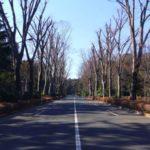 パワースポットの新常識!武蔵野御陵は明治神宮よりもスゴいパワースポットだよ!