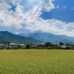 田舎に移住したら後悔する6つの理由!これがリアルな田舎の姿です!