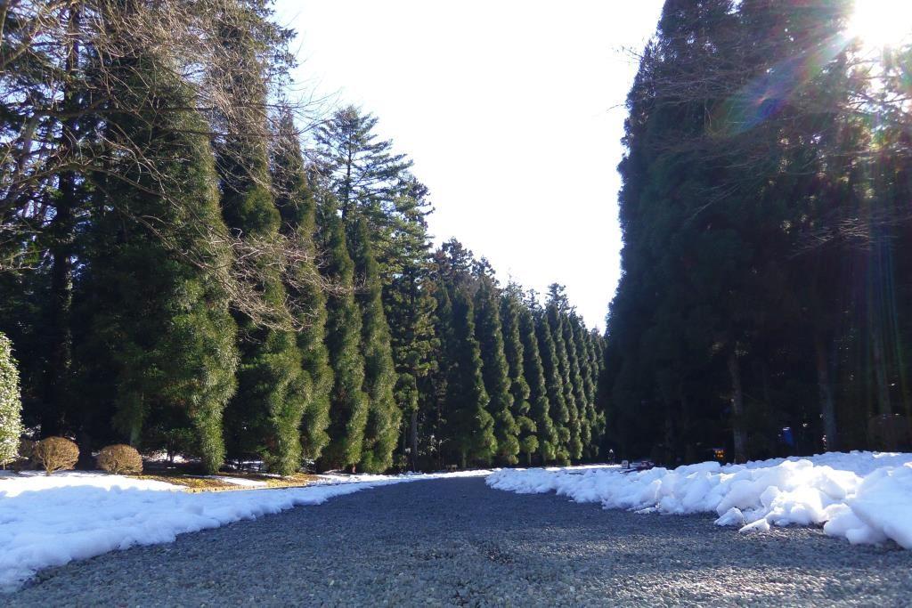 武蔵野御陵の参道