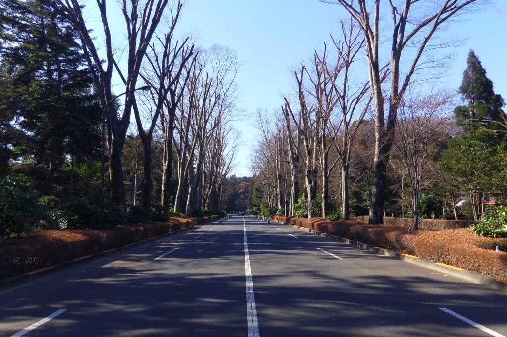 武蔵野御陵の入り口