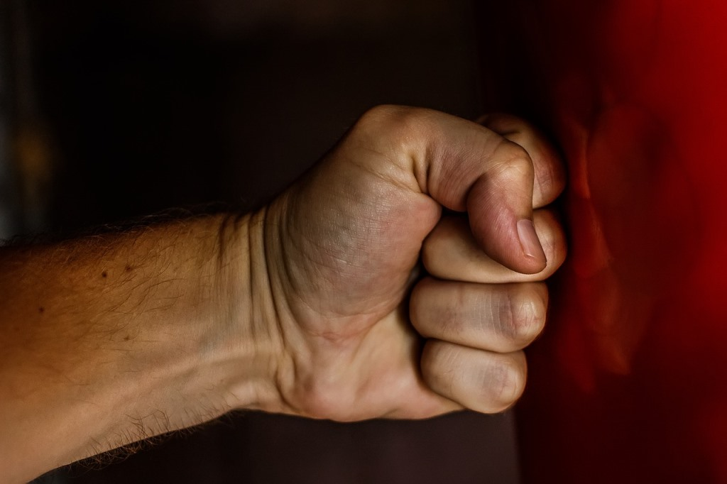 格闘家の拳